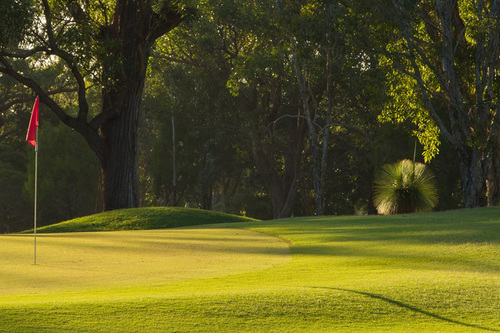Burleigh-Golf-Club_3.jpg