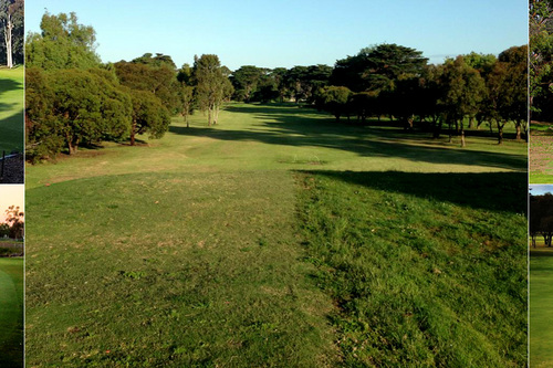 Elsternwick Park Golf Club