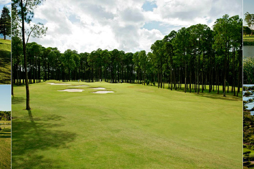 Sanctuary-Cove-Golf-_-CC---The-Pines_1.jpg