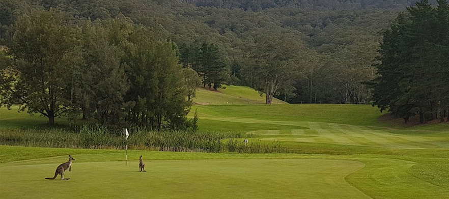 18 Holes For 2 With Drinks at Kangaroo Valley Golf & Country Resort