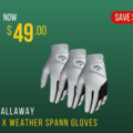https://files.golfer.com.au/uploads/website_image/product/357385/thumb_callaway_weather_spann.png