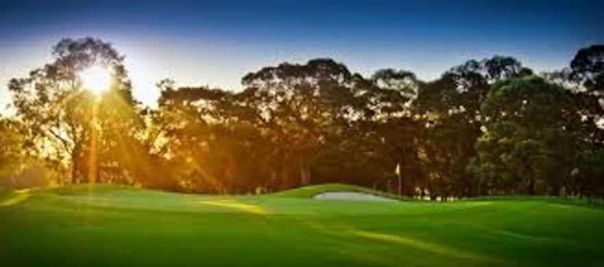 Twin Creeks Golf Day Fri 24th July
