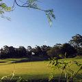 https://files.golfer.com.au/uploads/website_image/product/498030/thumb_RackMultipart20210113-19353-1n0djme.jpg
