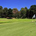 https://files.golfer.com.au/uploads/website_image/product/498032/thumb_RackMultipart20210113-21059-11ucdws.jpg